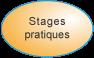 Stages pratiques